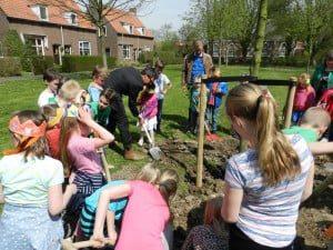 In 1898 werden op veel plaatsen Koningin Wilhelmina bomen geplant. Die traditie werd voorgezet in 2013 met de Koning Willem Alexander bomen.